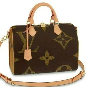 Louis Vuitton Speedy 30 Monogram Giant Bag
